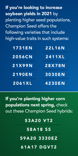 If you're looking to increase soybean yields in 2021 by planting higher seed populations, Champion Seed offers the following varieties that include high-value traits in such systems: 1731EN, 2056CN, 21X99N, 2190EN, 2061XL, 22L16N, 2411XL, 28X78N, 3030EN, 4230EN. If you're planting higher corn populations next spring, check out these Champion Seed hybrids: 53A20 VT2, 58A18 SS, 59A20 3330EZ, 61A17 DGVT2.